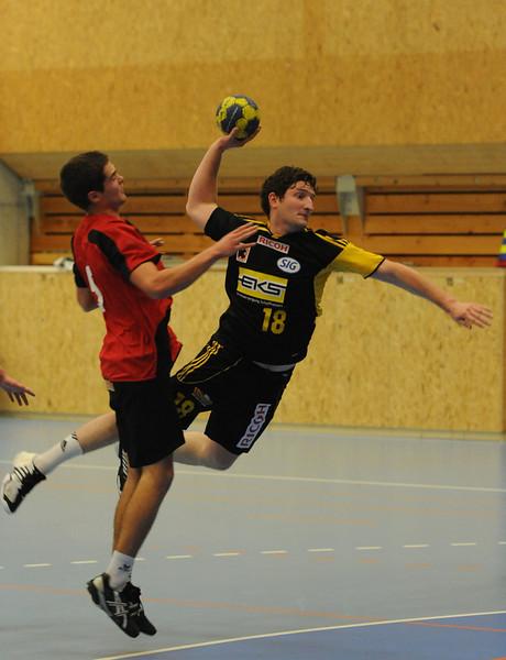 Handball 2010/2011