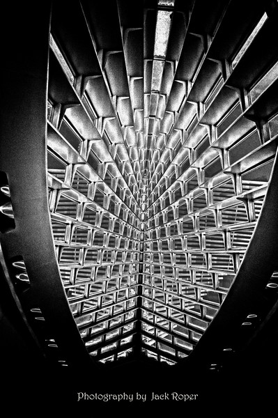 Calatrava ceiling BW Sol   copy.jpg