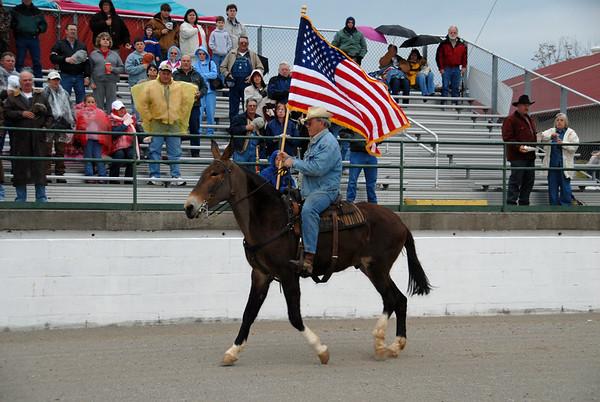 2007 Gaited Mule Show
