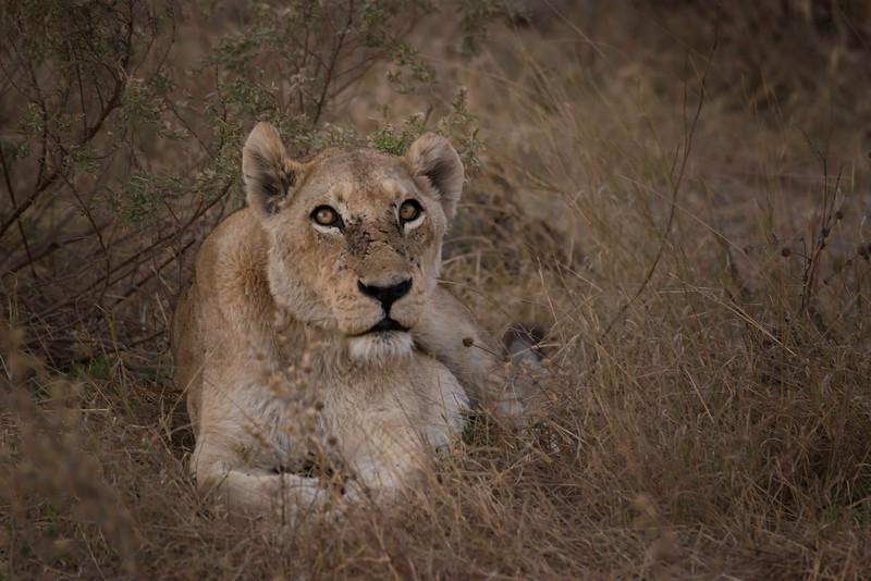 2014-08Aug-Okavango Masters-96-Edit.jpg