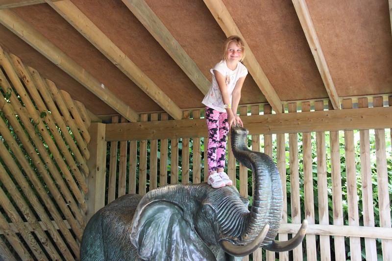 colchester zoo (108).jpg