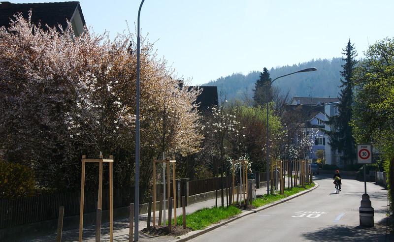 110402 0005 - Switzerland.jpg