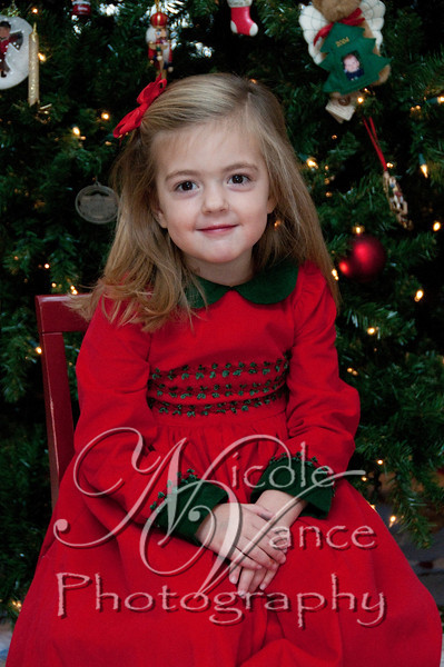 Barfields-Christmas 2010