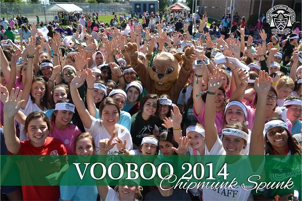 VooBoo 2014