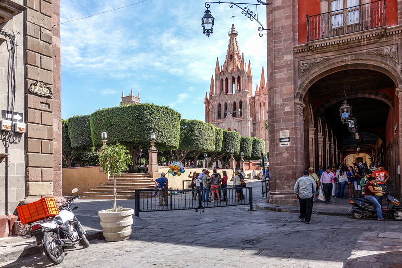 The Jardin from Hidalgo