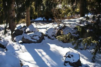 Impressionist Winter Landscapes