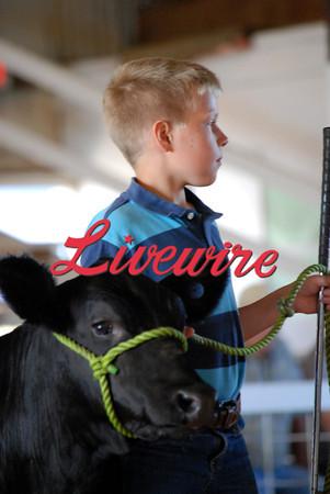 Beef Show 2012