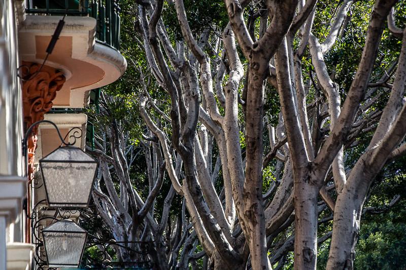 May 29 - Santa Barbara shapes.jpg