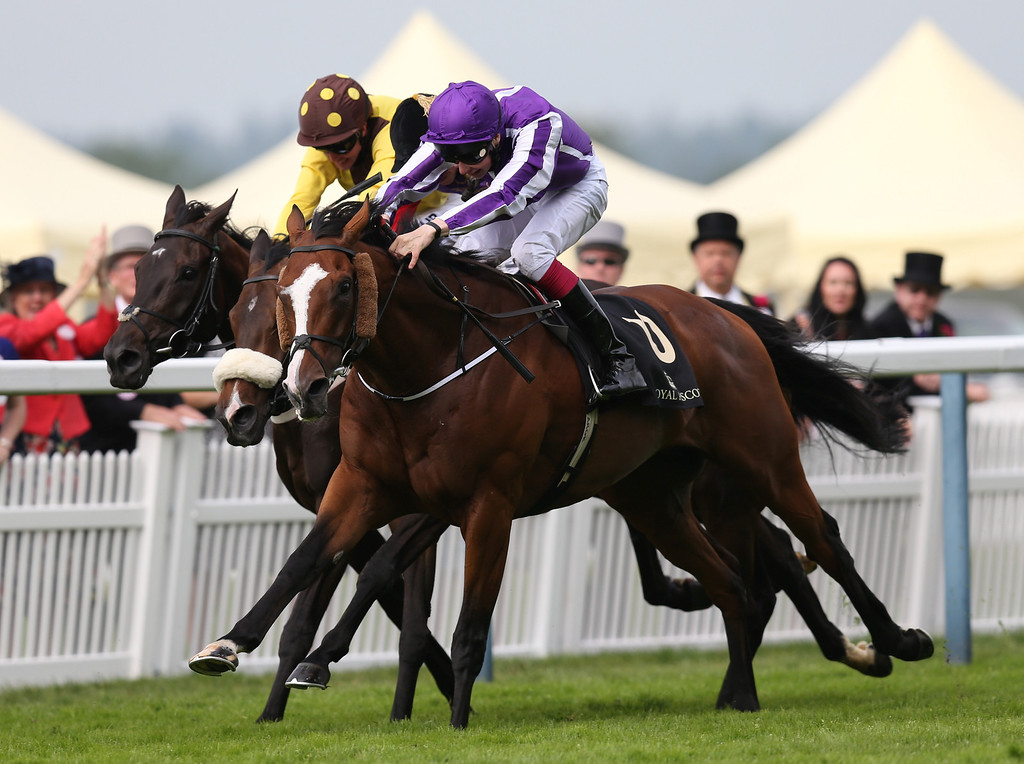. Leading Light ridden by Joseph O\'Brien breaks away to win the Gold Cup on day three of Royal Ascot at Ascot Racecourse on June 19, 2014 in Ascot, England. (Photo by Steve Bardens/Getty Images)