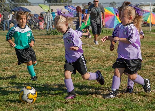 Purple Ponies Soccer