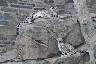 2013-11-12 Philadelphia Zoo