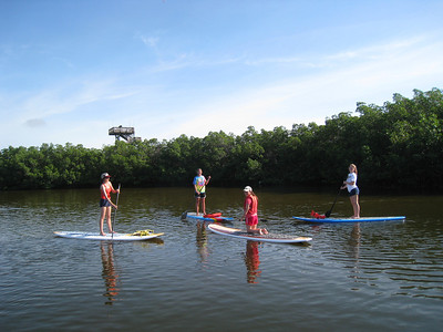 Stand Up Paddleboarding (SUP) through Weedon Island