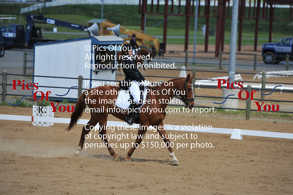 Dressage At The Meadows VADA Central May 2014
