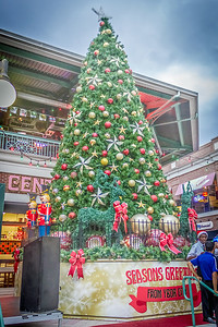 Ybor City Tree Lighting 2015