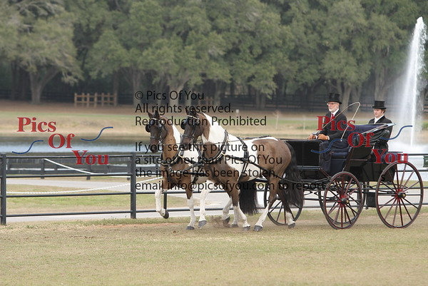 FCMR Carriage Driving Competition 2011