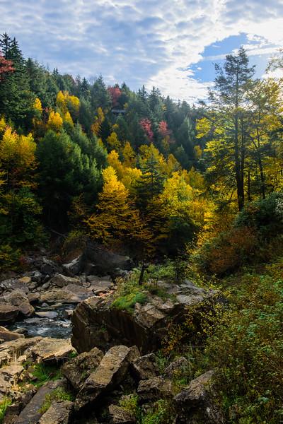 20171007 Blackwater State Park 067-HDR.jpg