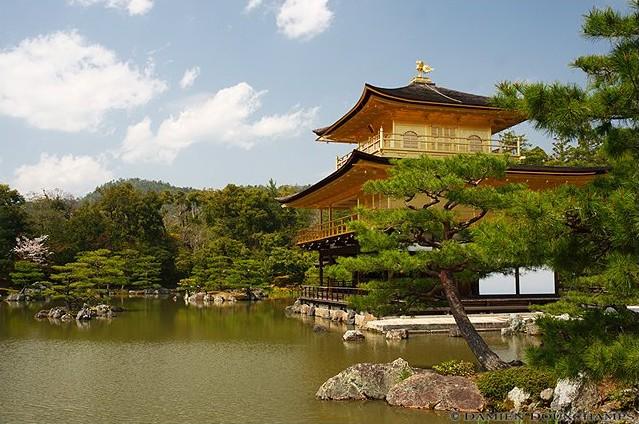 Kinkaku-ji Temple image copyright Damien Douxchamps