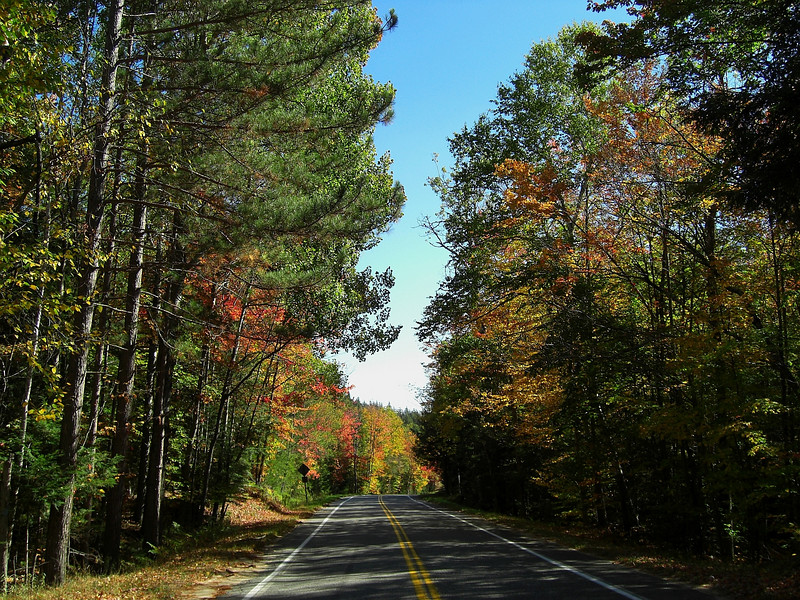 Forest Home Rd, oct 4, 2007 - downhill straight