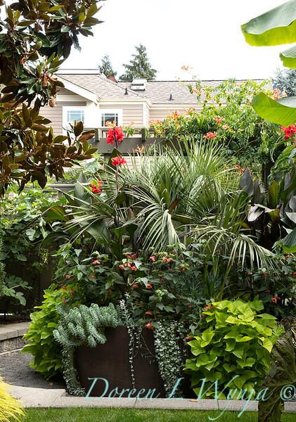 Lisa Bauer - designer's garden_1308.jpg
