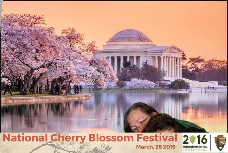 Boothie-NPS-CherryBlossom- (109).jpg
