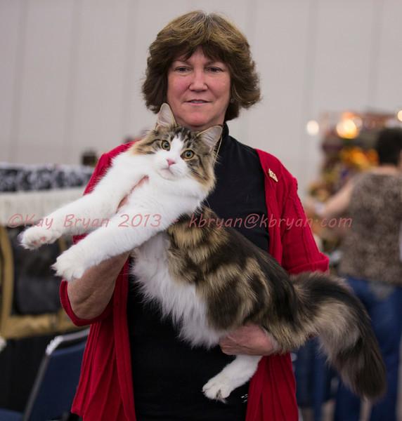 CatShow2014012_1.jpg