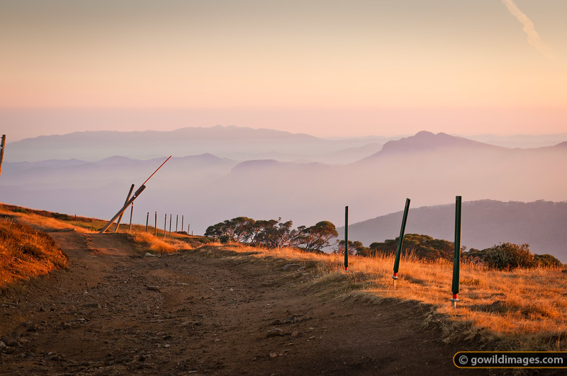 Early morning light on alpine snow poles and 4wd track, Mt Stirling. Mt Buffalo (L) and Mt Cobbler (R) are in the distance, with smoke from a nearby bushfire filling the valleys below around 1000m