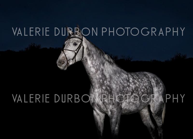 Valerie Durbon Photography Jenna 32.jpg