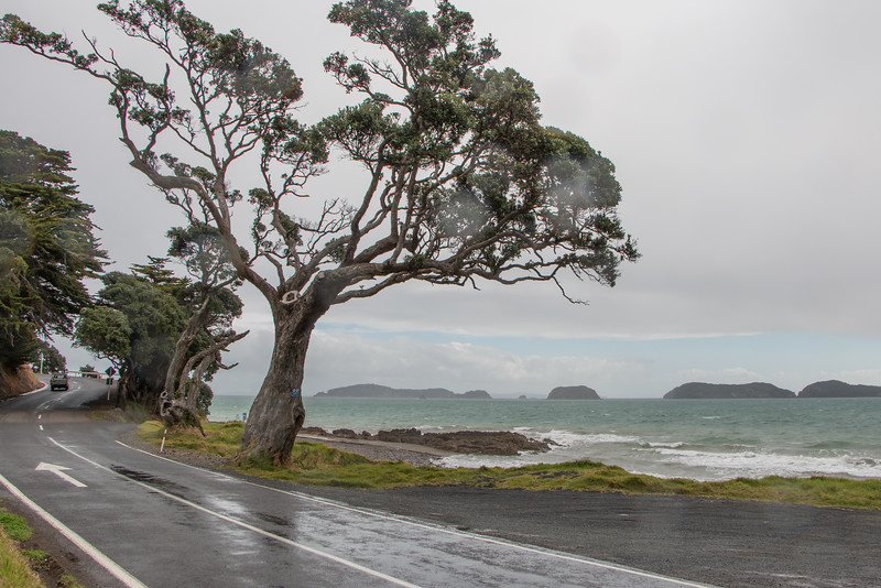 Motuwi Islands in the rain 5843