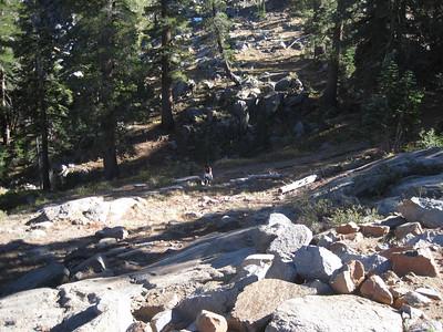 Lost Cabin Mine -- Western Sierras