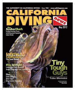 """""""California Diving News"""""""