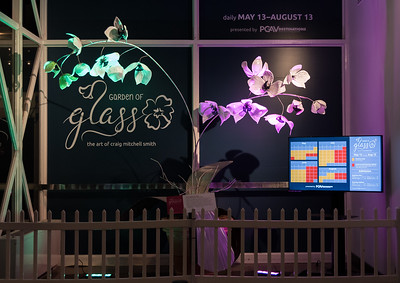 Garden of Glass June 2017