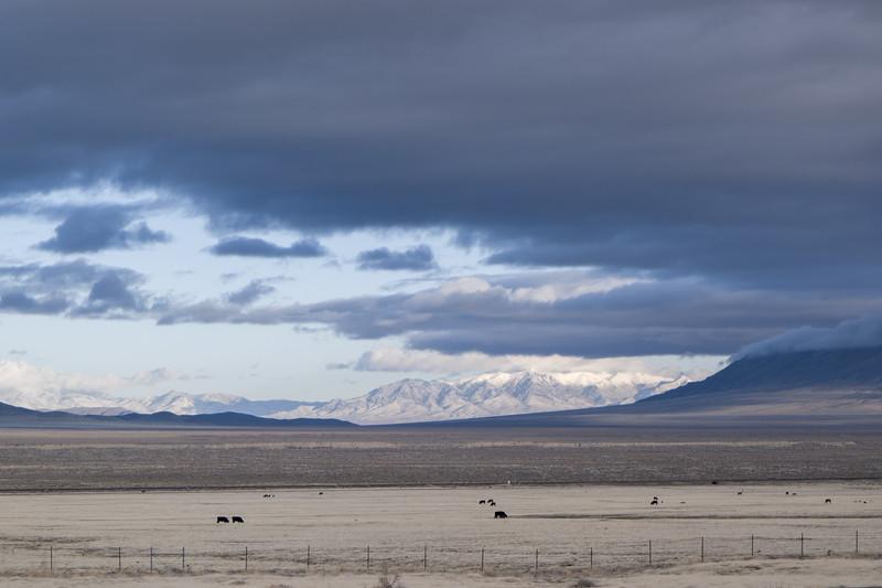 Nevada I-80