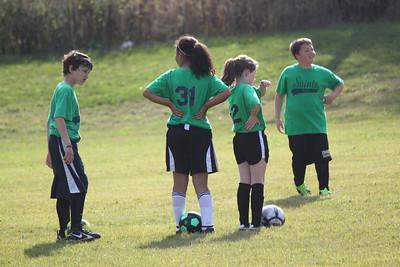 RLA Soccer 2013