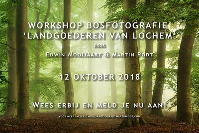 2018-10-12 Workshop bosfotografie (Dutch)