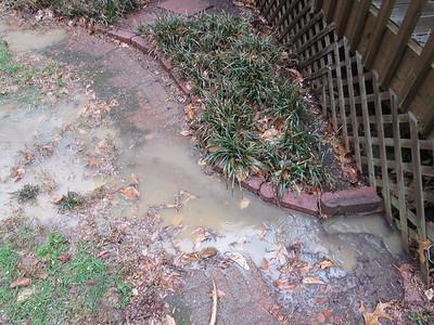 Backyard flooding