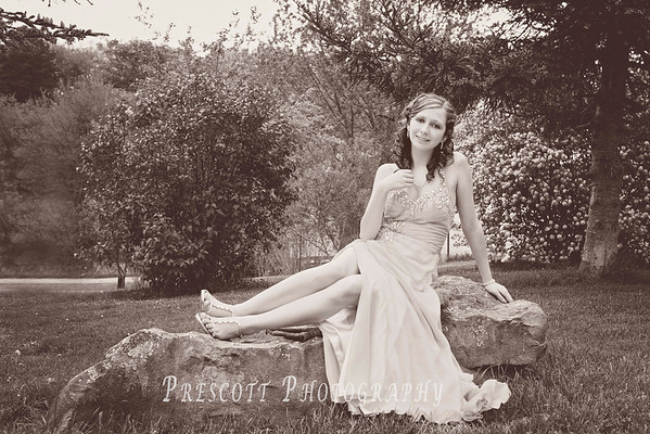 Paige Prom 2014