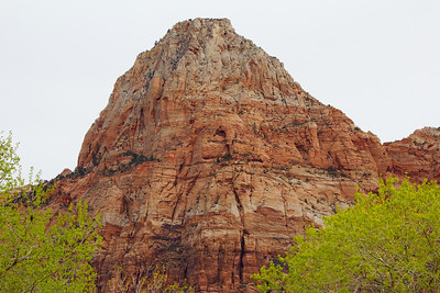 2014-03-21 Zion NP