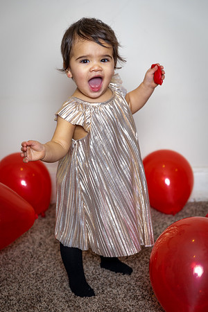 Ruby's First Birthday 2020