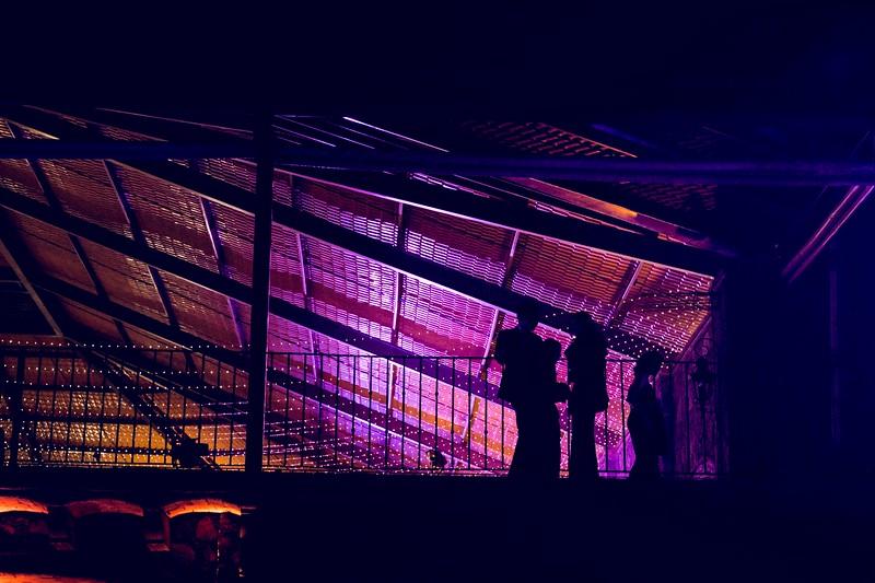 F&D boda ( Hacienda Los Albos, Querétaro )-1347.jpg
