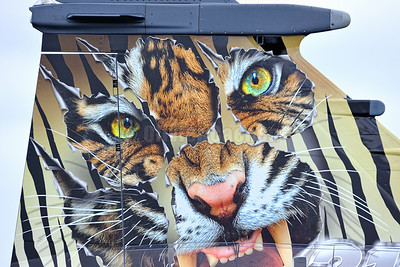 Nato Tiger Meet Cambrai 2011