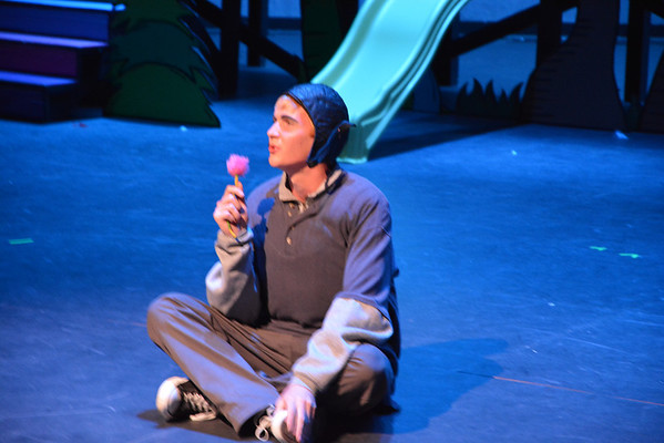 Seussical The Musical 2013