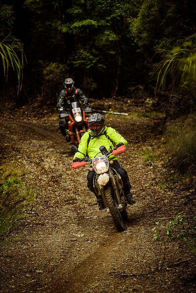 2019 KTM New Zealand Adventure Rallye (1320).jpg