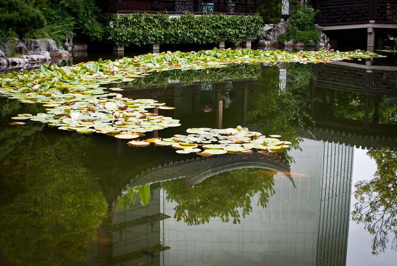 Portland 201208 Lan Su Chinese Garden (13).jpg
