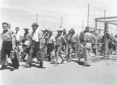 Loveday Internment Camp WW2