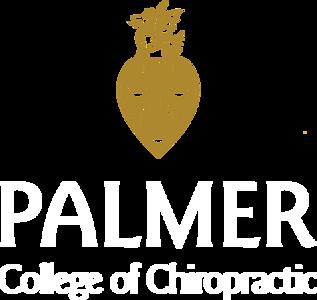 Palmer Logos for Media Use