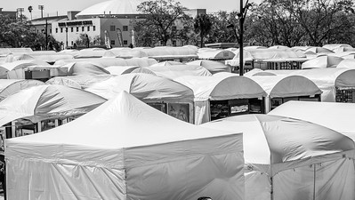 Gasparilla Art Festival 2020