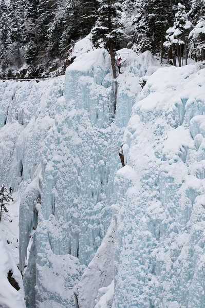 Ouray 2010-104