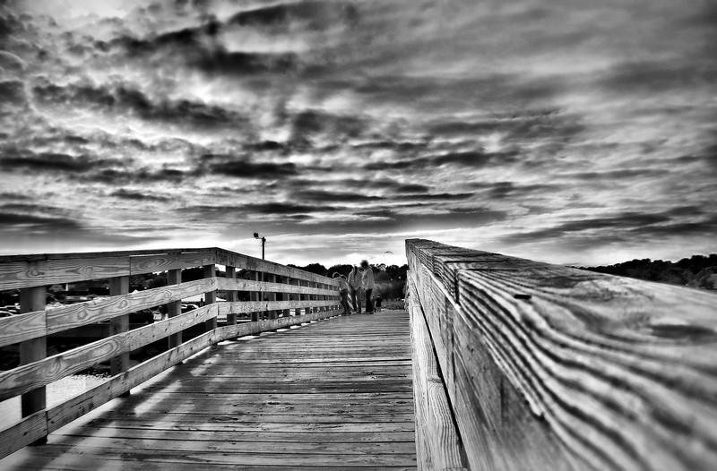 bridge bw.jpg