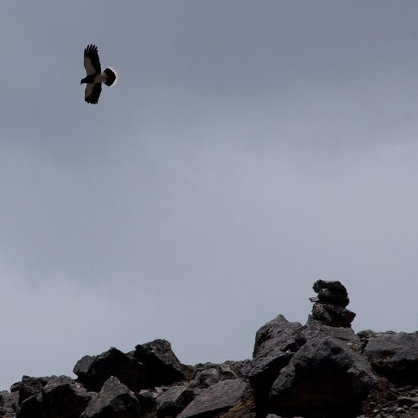 Peru_042.jpg