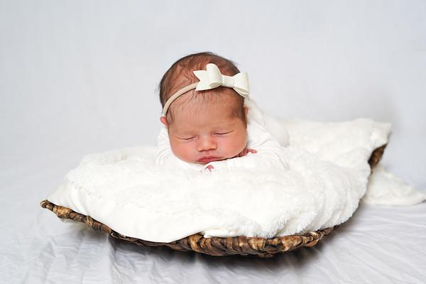 Cecilia Newborn Portrait order